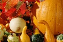 Jak odżywiać się jesienią?