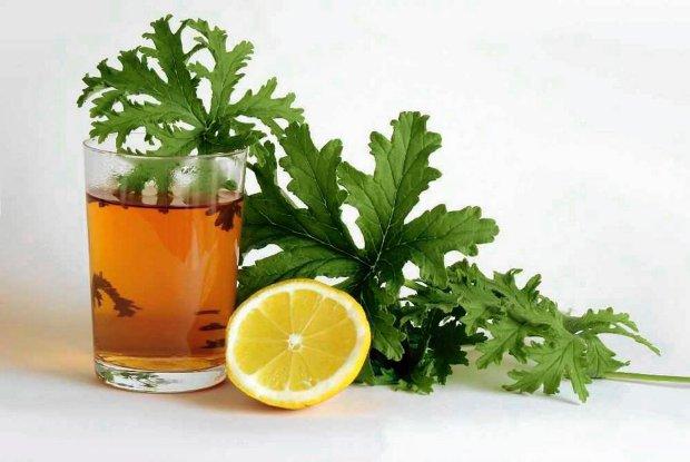Właściwości geranium