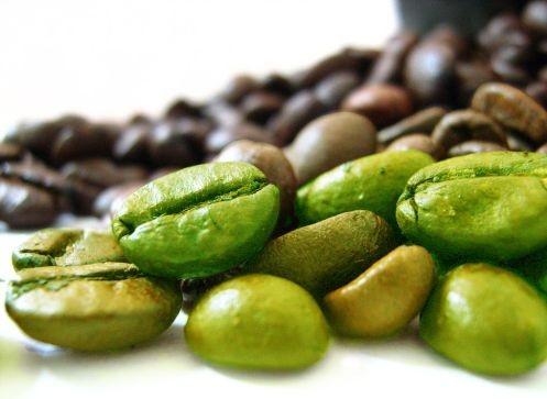 Zielona kawa – właściwości