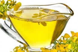 Oliwa kontra olej rzepakowy – co faktycznie jest lepsze?