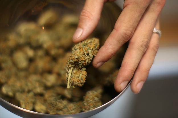 Leczenie raka marihuaną?