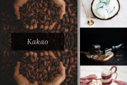 Czy wiecie wszystko na temat kakao?